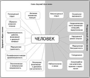 Схема_Здоровый образ жизни