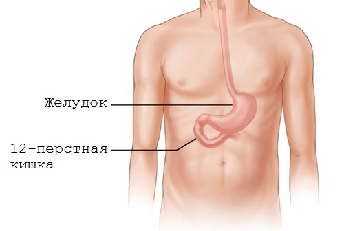 Позывные пустого желудка
