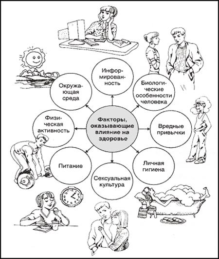 Правила здорового образа жизни, Факторы, влияющие на здоровье
