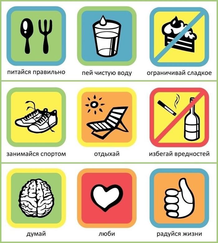 Правила на каждый день. Десять шагов к здоровой жизни